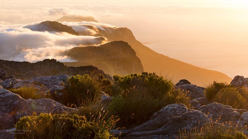 Table Mountain, WC, SA, Jan 2014-1.jpg