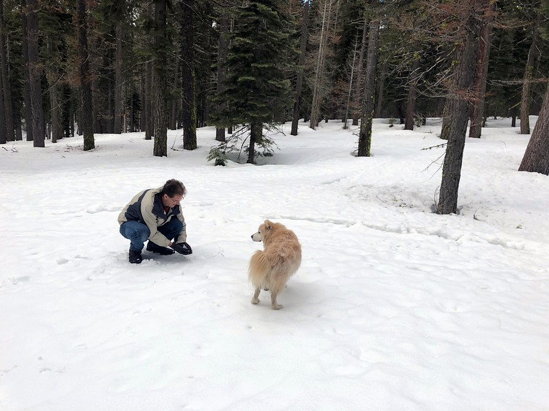 2019-03-21-0022-Trip to Tahoe with Dogs-Lake Tahoe-Curtis-Leo the Dog.JPG