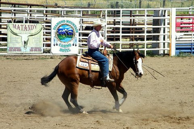 AQHA Quarter Horse Show at the Fairgrounds