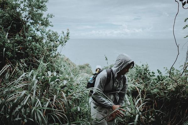 Son Tra peninsula - Da Nang - Vietnam