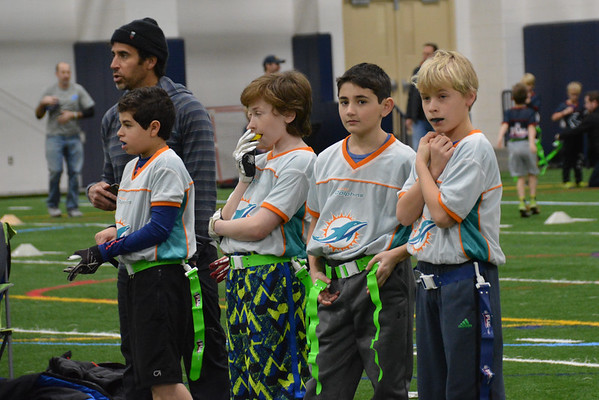Dolphins Flag Football #2