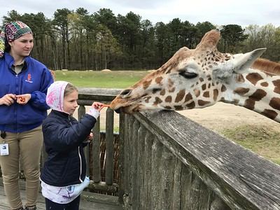 Grade 2 Trip to Safari