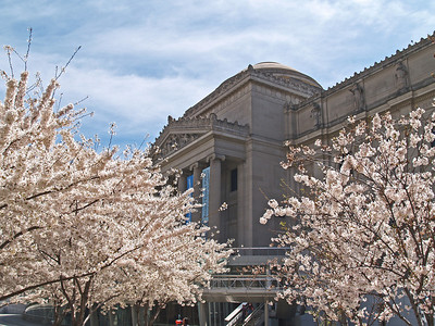Brooklyn Botanic Garden April 2009