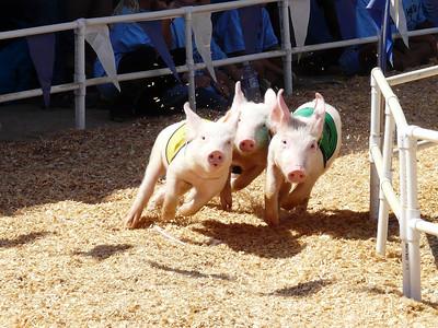 2010 Orange County Fair, Costa Mesa, California