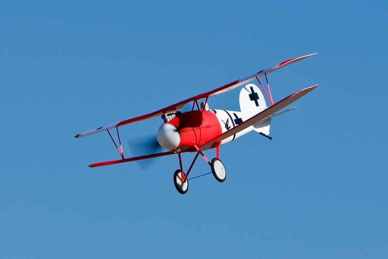 FZ_AlbatrosDV_17.jpg