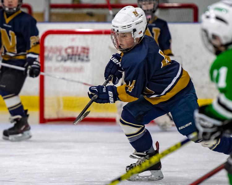 2019-02-03-Ryan-Naughton-Hockey-25.jpg