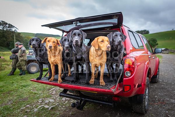 Scottish Borders team