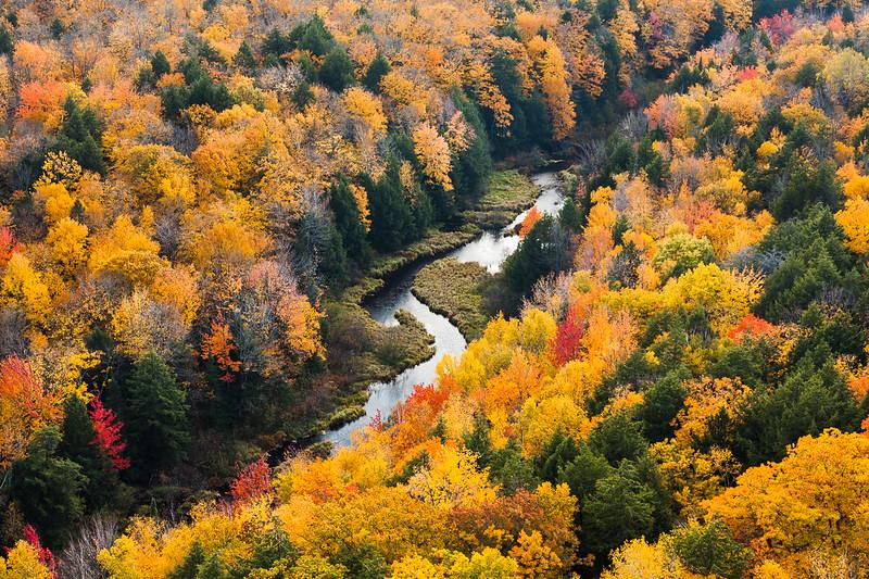 Carp River