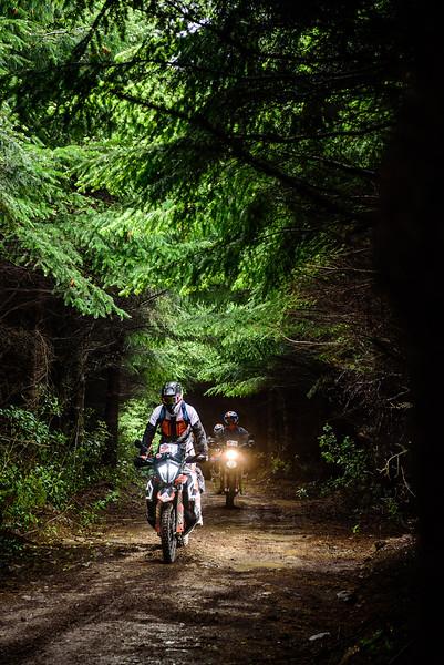 2019 KTM New Zealand Adventure Rallye (297).jpg
