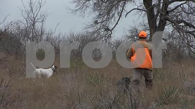 quailmasters-2017-registration-due-march-10