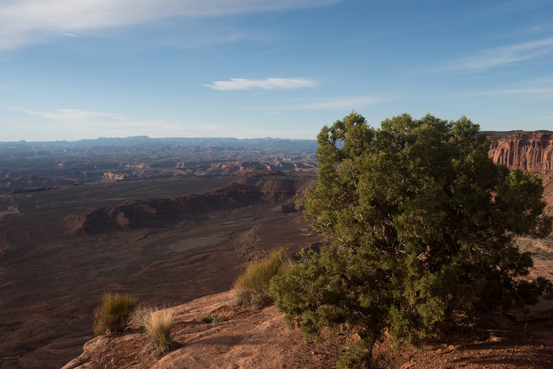 20160313 Canyonlands National Park 136.jpg