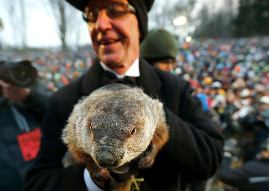 . Groundhog Club co-handler Ron Ploucha holds the weather predicting groundhog, Punxsutawney Phil, after the club said Phil did not see his shadow and there will be an early spring, on Groundhog Day, Saturday, Feb. 2, 2013, in Punxsutawney, Pa. (AP Photo/Keith Srakocic)