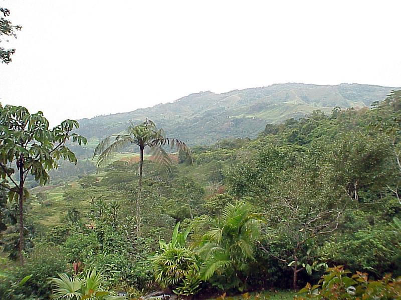Rancho Naturalista Costa Rica 2-12-03 (50898224)