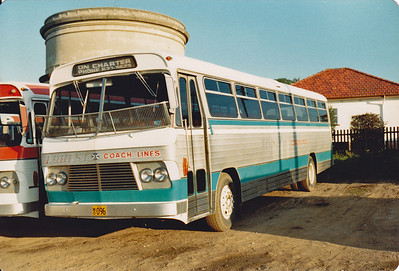 Drummond Transit - Greenacre NSW