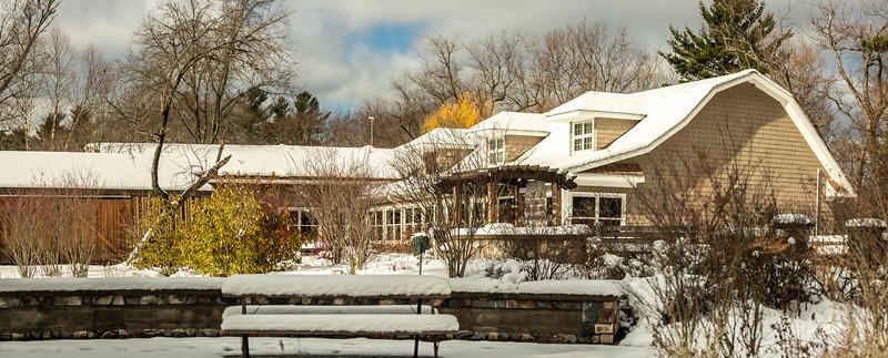 Asbury Woods Winter