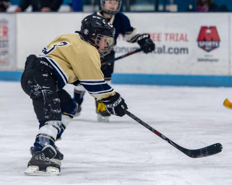 2019-Squirt Hockey-Tournament-199.jpg