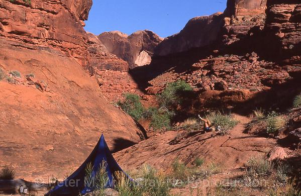 Waterpocket Fold and White Rim Trail, Utah