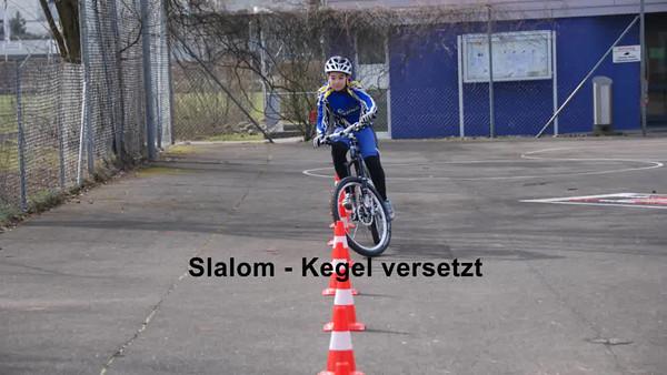 Veloparcours Feldhof