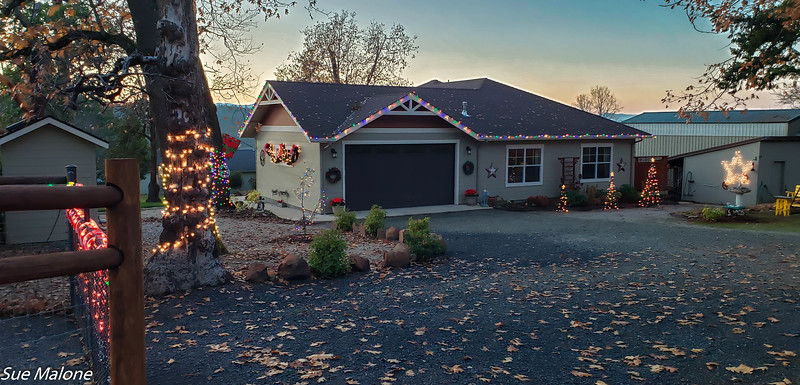 12-01-2020 Christmas Lights Up-3.jpg