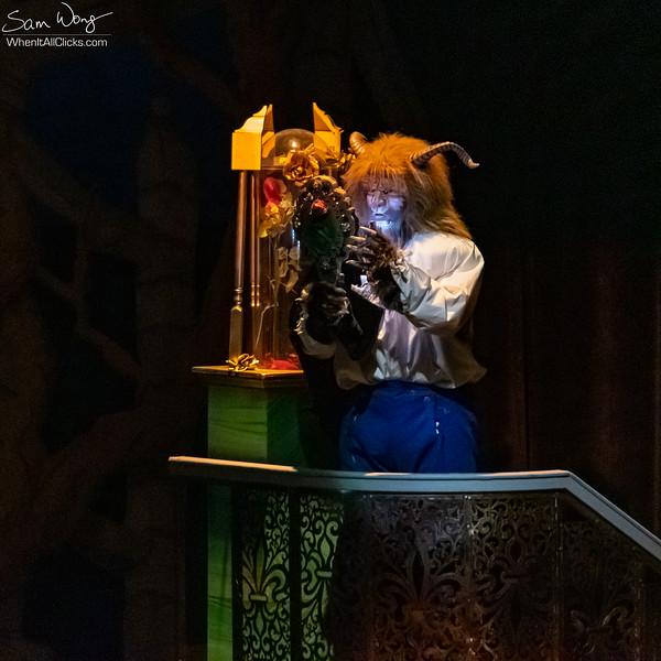 Beauty and the Beast 2018-11-08-64858.jpg