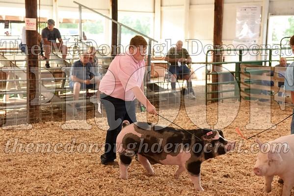 Swine Show 07-12-17