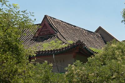 Beijing, P.R.C.