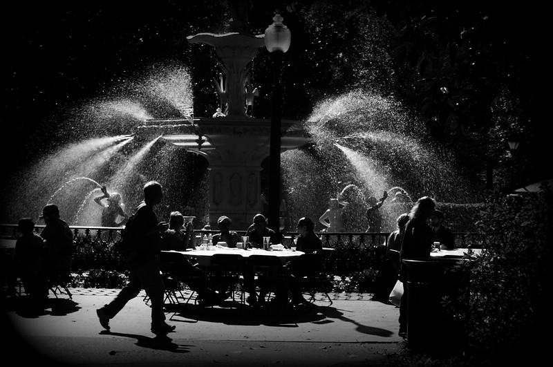 vignette bw savannah fountain