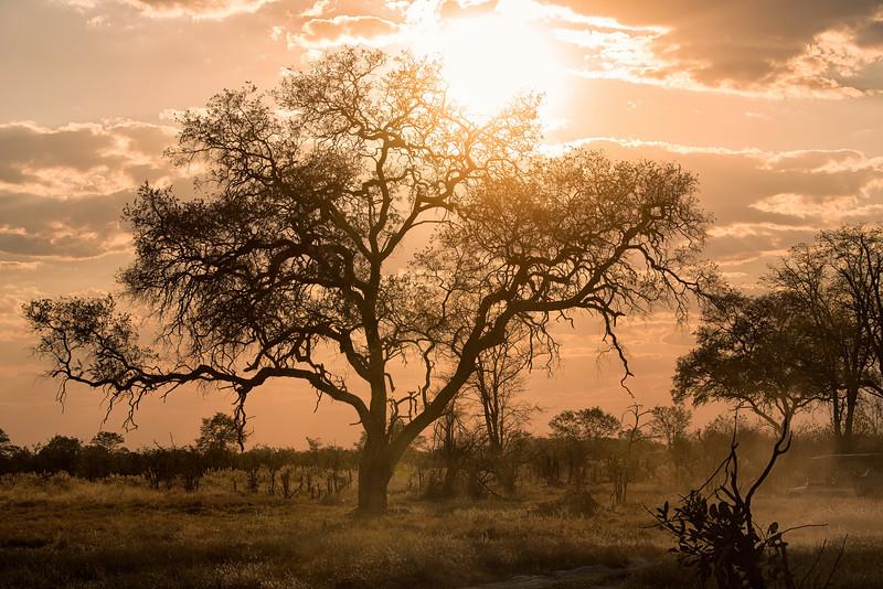 2014-08Aug-Okavango Masters-84-Edit.jpg