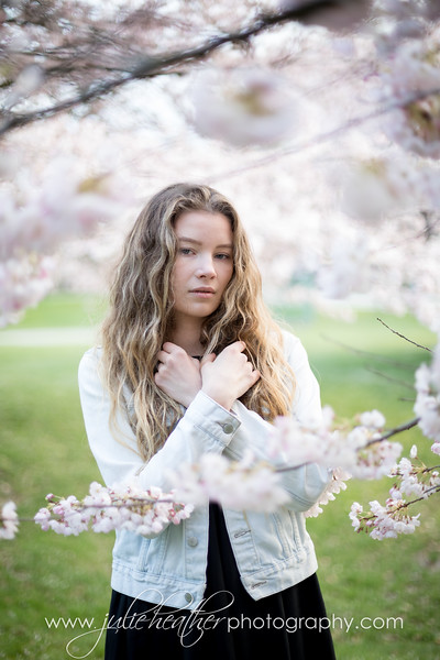 Miss Sadie Cherry Blossoms April 2018