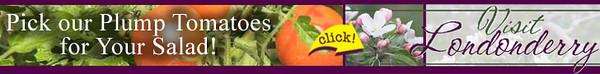 !visit_ad_728x90_upick_tomatoes.jpg
