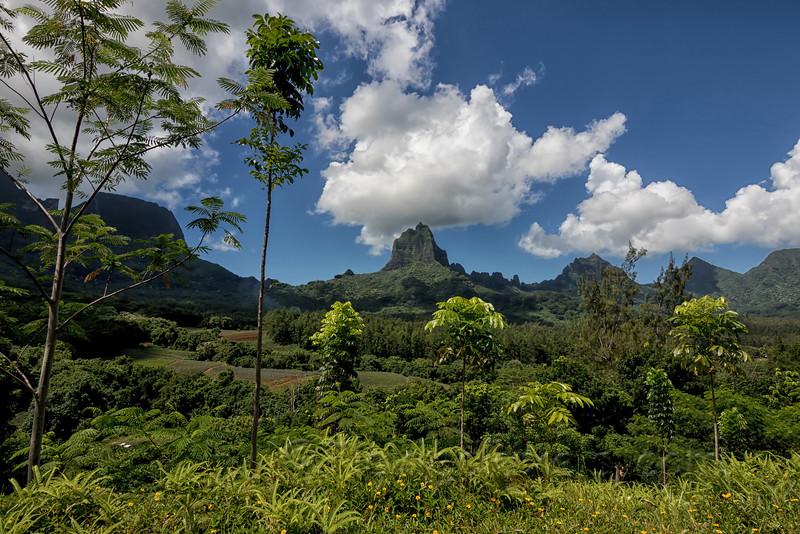 Mt. Tohiea
