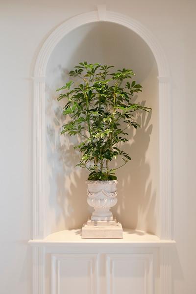 Florascapes Rosewood Miramar