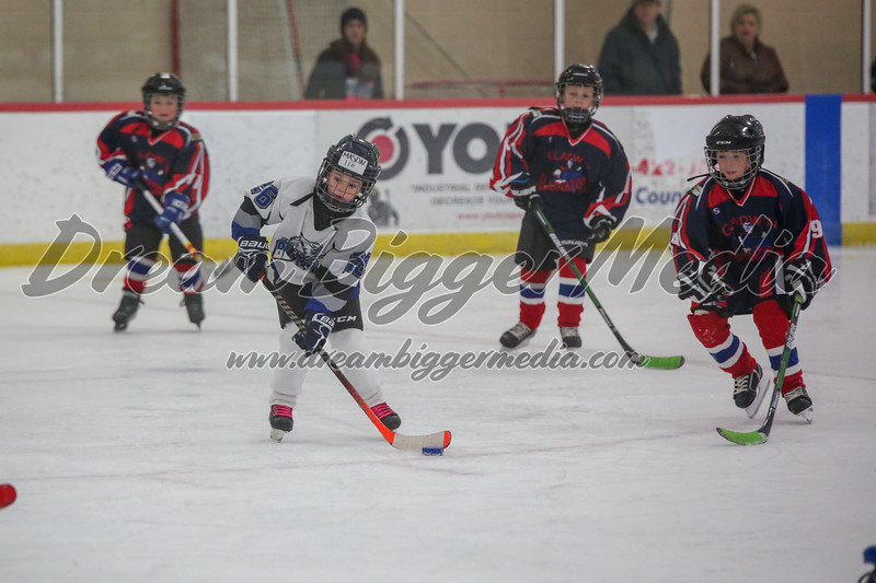 Blizzard Hockey 111719 7627.jpg