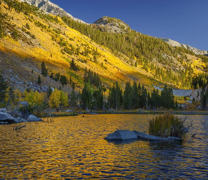 Mono_County_Fall_Color_Eastern_Sierra_McGee_Canyon_DSC6962-Pano.jpg