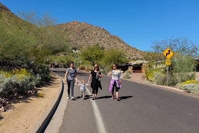 Phoenix Family Hike