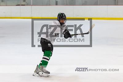 Hockey Clinic 12/6/20