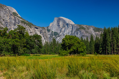Yosemite National Park (California)