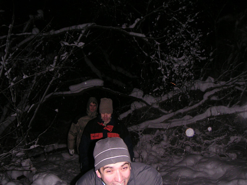 Walking in the Snow.jpg