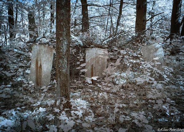 Catskill Game Farm Cemetery (IR) 2019