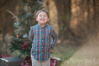 2014 Holiday Mini Sessions