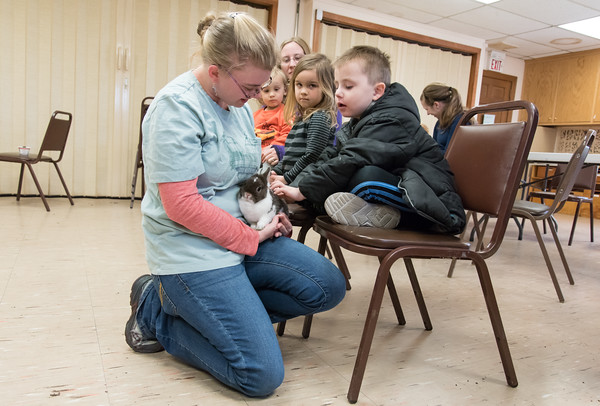 04/11/18 Wesley Bunnell | Staff Animal care staffer and educator Meaghan Jameson holds Kiwi the rabbit for Dennis Archambeault, age 5, to touch during an animal class at the New Britain Youth Museum at Hungerford Park on Wednesday afternoon. .