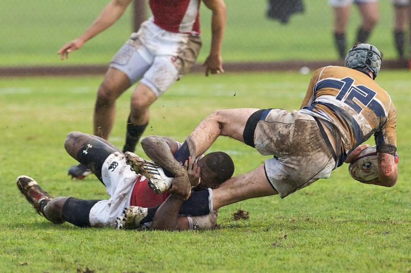 rugby-stanford-davis  9922.jpg
