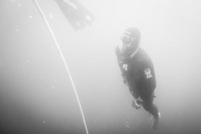 FII Waterman Survival