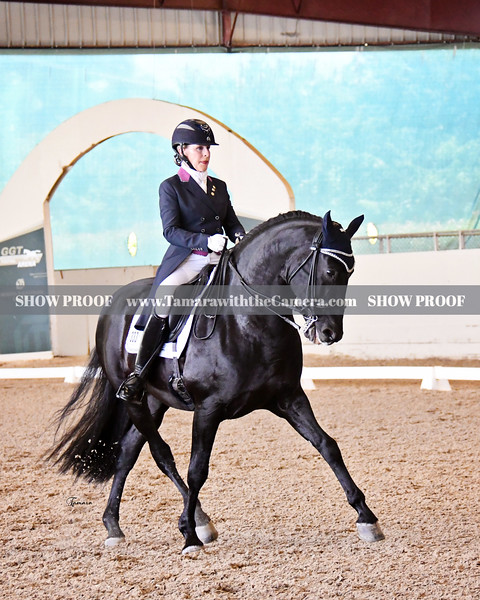 Golden State Dressage Classic