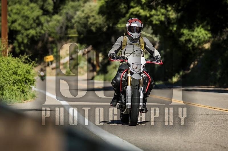 20170402 Palomar Mountain 0016.jpg