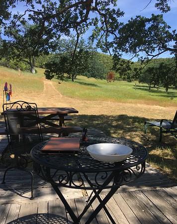 Larry Orlick ranch 2019