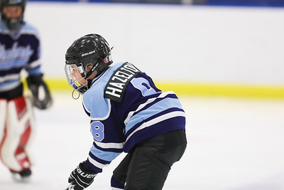 Hazelton Hockey