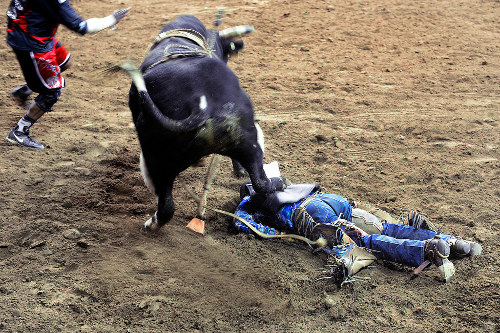 . DENVER, CO. - JANUARY 21:  Jimmy Patterson is knocked out by his bull at the National Western Stock Show Martin Luther King Heritage Rodeo January 21, 2013 (Photo By AAron Ontiveroz / The Denver Post)