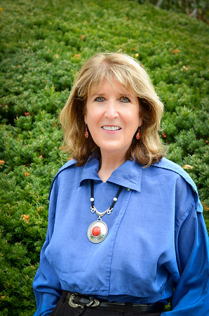 Lisa Larson Hill