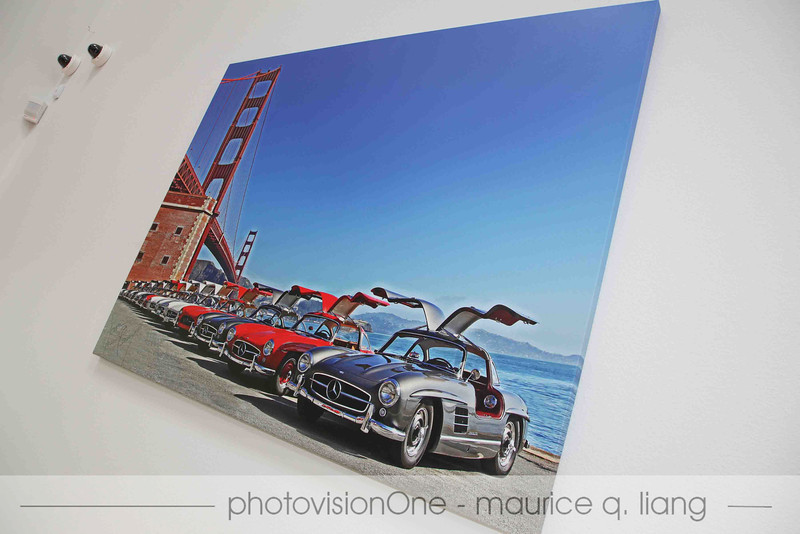 Joan Geary's photo printed on canvas of Gullwings by the Golden Gate Bridge.